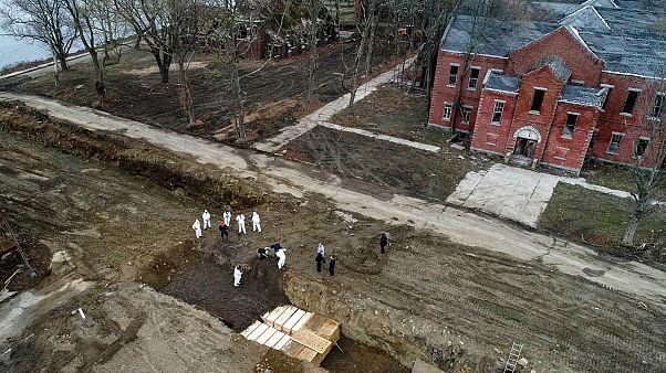 New York'ta koronavirüsten ölenlerin cenazeleri 'ölüler adasına' gömülüyor