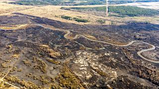 This aerial picture taken on April 12, 2020 shows the aftermath of a forest fire at a 30-kilometer (19-mile) Chernobyl exclusion zone in Ukraine