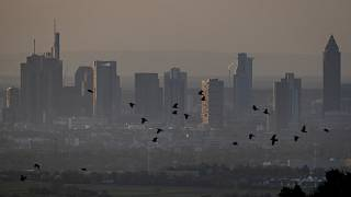 Birds fly by the buildings of the banking district in Frankfurt, Germany, early Tuesday, April 14, 2020. Due to the coronavirus the economy expects worldwide heavy losses.