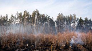 Чернобыльский дым в Европе