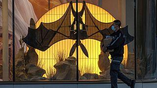 سازمان جهانی بهداشت: منشا کرونا به احتمال زیاد خفاشها بودهاند، نه دستکاری آزمایشگاهی