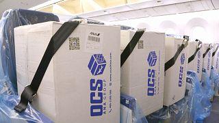 شاهد: شركة طيران مدنية يابانية تحمل على متنها معدات طبية بدل المسافرين