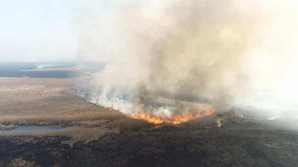 Höchste Warnstufe: Landschaftsbrände in Polen