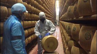 Italien trotzt der Corona-Krise - Produktion von Parmesan geht weiter