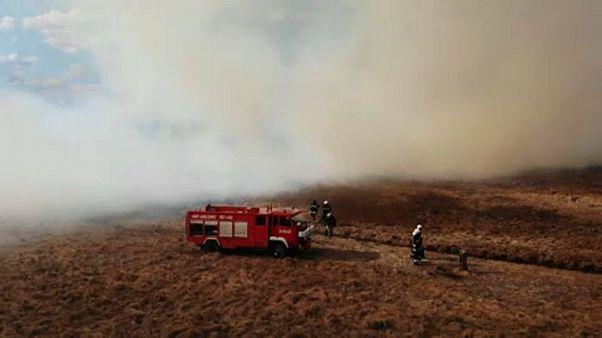 Maior Parque Natural da Polónia está a arder