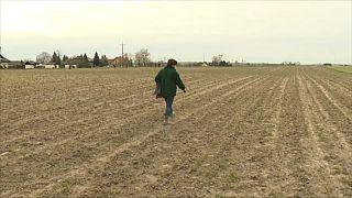 La Pologne inquiète face à la sécheresse intense qui se profile