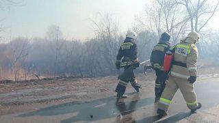 В Сибири полыхают лесные пожары