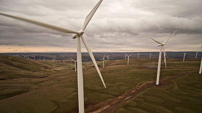 Large wind farm, wind turbines