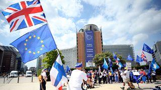 Brüksel'de Avrupa Birliği Komisyonu önünde Brexit karşıtı protesto