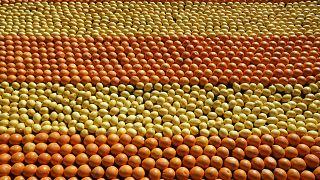 Tapis de citrons et d'oranges lors de la Fête du Citron à Menton (France) en 2009. Photo d'illustration.