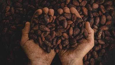 Is a coffee shortage inevitable as climate change gets worse?