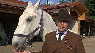 Das Wiener Kutschpferd Leopold geführt von Werner Kaizar