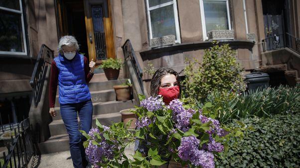 Floricultores querem recuperar prejuízos