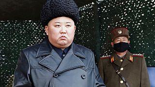 North Korea Kim Health