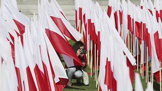 Poland celebrates Constitution Day as criticism grows over postal Presidential vote legislation