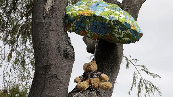 APTOPIX Virus Outbreak New Zealand Bears