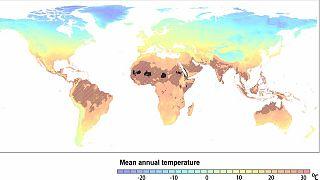 Önlem alınmaması halinde 2070 yılında öngörülen sıcaklık seviyeleri