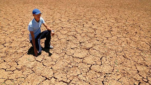 هشدار دانشمندان: یک میلیارد نفر در سال ۲۰۷۰ در گرمای شدید زندگی خواهند کرد
