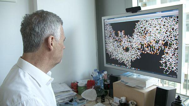 Koronavírus: az állatoktól jött, állati oltóanyagok segíthetnek