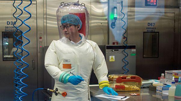 ما نجهله عن مصدر فيروس كورونا قد يحسم المعركة مع الوباء؟