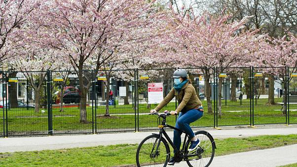 APTOPIX Virus Outbreak Canada Cherry Blossoms