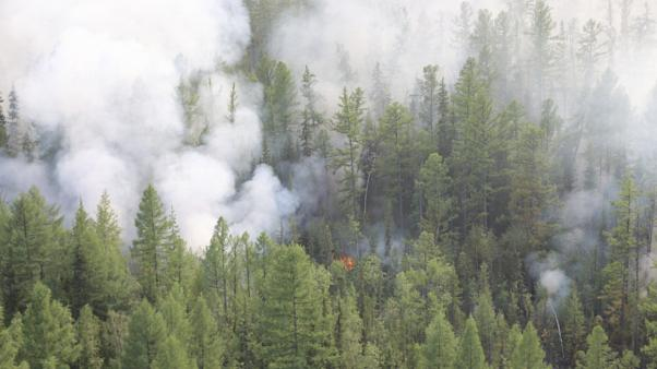 Russia Forest Fires