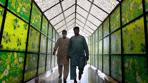 ابتکار پاکستان برای کاهش سطح بیکاریها در دوران شیوع کرونا