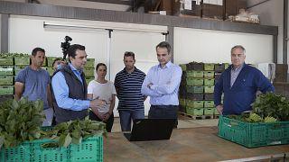 greekfarms.gov.gr: Σε αγρόκτημα στον Αυλώνα ο Κ. Μητσοτάκης