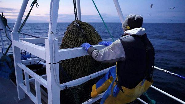 صيادون على متن سفينة صيد الأسماك قبالة ساحل شمال شرق بريطانيا في 21 يناير 2020