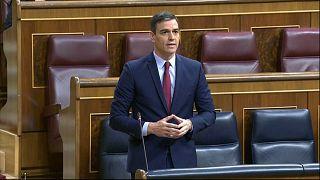 Pedro Sánchez pide unidad al Congreso para salvar vidas y empleos