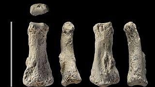 بقایای انسانهای خرمند اروپا (عکس تزيینی است)