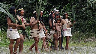 Amazonlarda salgın yayılıyor: Ekvador yerlilerinde ilk Covid-19 vakası