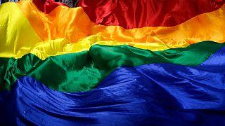 پرچم دگرباشان جنسی
