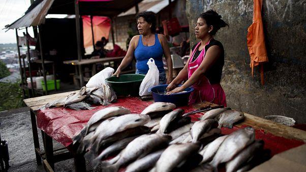 Vendedoras de pescado en Iquitos