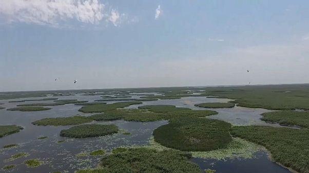 Das Wolga-Delta