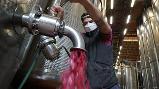 Lambrusco wine at a winery near Reggio Emilia, central Italy.