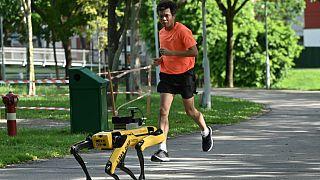 Singapur: Roboter-Hund Spot achtet für die Polizei auf Social Distancing