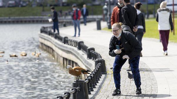 Женщина фотографирует утку в московском парке. В городе введен режим карантина.