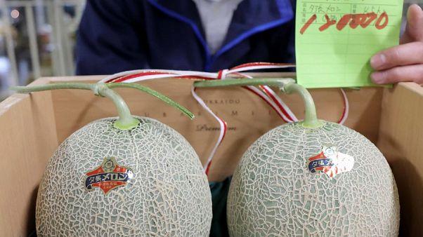 زوج من البطيخ الأصفر بيع في مزاد ياباني بنحو 1114 دولاراً أمريكياً