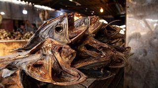 سمك المسموطة المفضل لدى سكان جنوب العراق 24/05/2020
