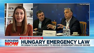 Anna Donath, Hungarian MEP speaking to Euronews