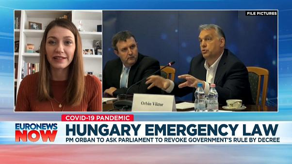 Anna Donath, Hungarian MEP speaking to Euronews