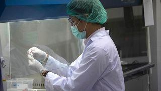 Covid-19 aşısı için çalışmalar sürüyor