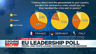 Merkel enjoys broad support in Euronews poll