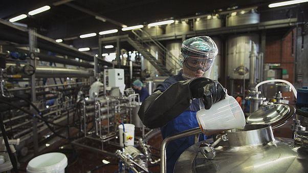 La bioeconomia si può fare, anche su scala industriale