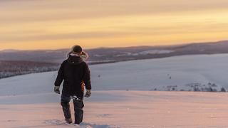 Arctic bölgesi