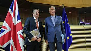 European Union chief Brexit negotiator Michel Barnier and British Prime Minister's Europe adviser David Frost during the start of the first round of post -Brexit.