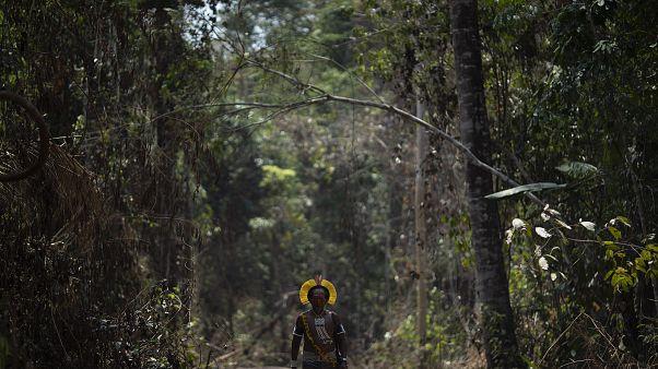 Őslakos a brazíliai őserdőben