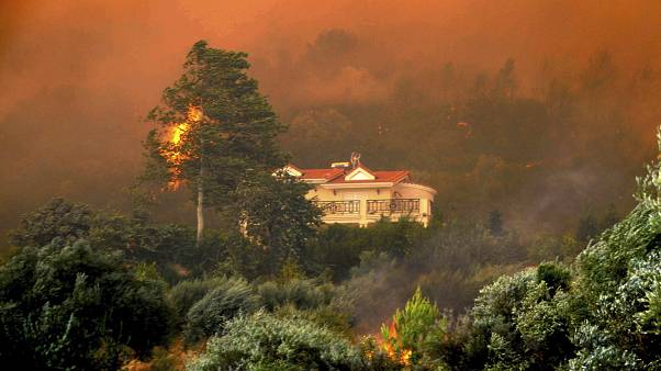 Europe Wildfires/ File Photo from Greece