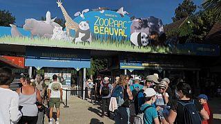 Le zoo de Beauval